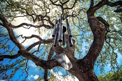 Tree Chime