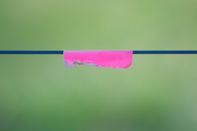 pink on blue wire