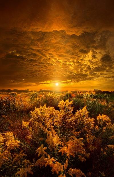 Heavenly Earth