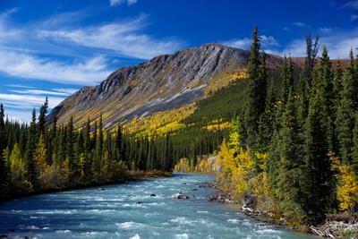 Wheaton River,Yukon Territory,Canada