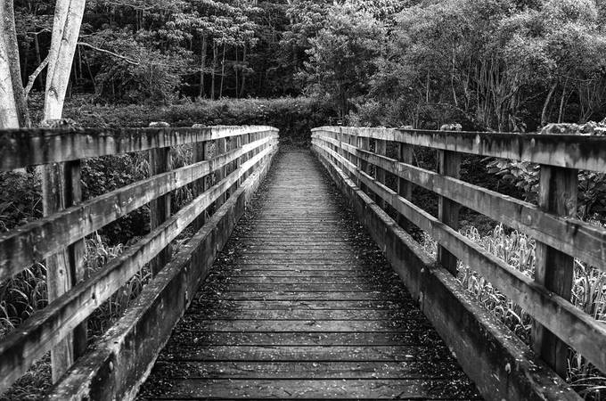 bridge by islandbug - Fences Photo Contest