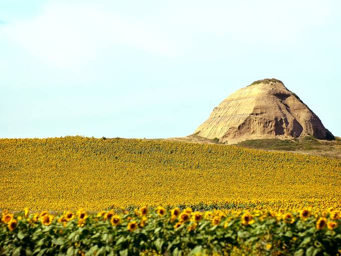 Taken with Nikon D5100 using AF-S Nikkor 70-300mm 1:4.5-5.6 G lens near Bismark, North Dakota.  Enhanced and resized using onOne Perfect Photo Suite 8.5.