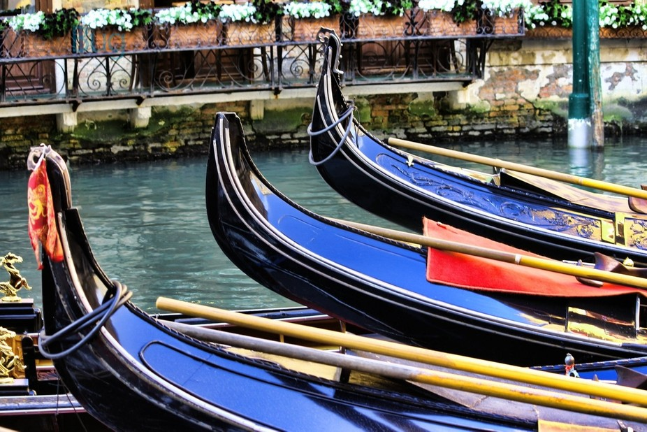 A close of the Gondola\'s of Venice make evident the detail that goes into the design of the gondola.