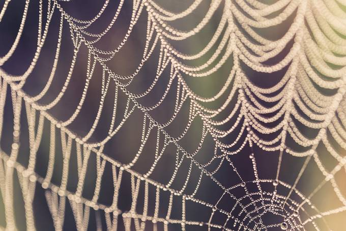 Sparkling by silviali - Twisted Lines Photo Contest
