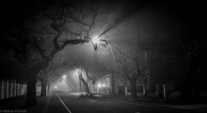 Evening Fog by npenhall - Lost In The Fog Photo Contest
