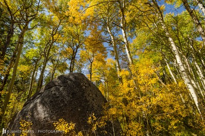 Fall Colors at Vedauwoo