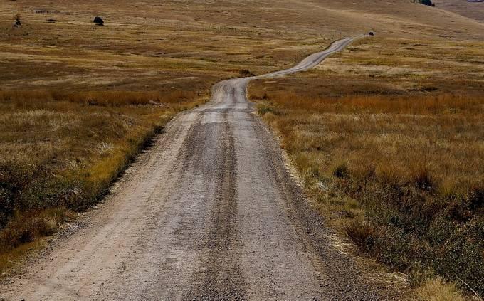 Montana Bison Range by barbarabrock - Dry Fields Photo Contest