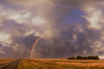 cecil plains rainbow