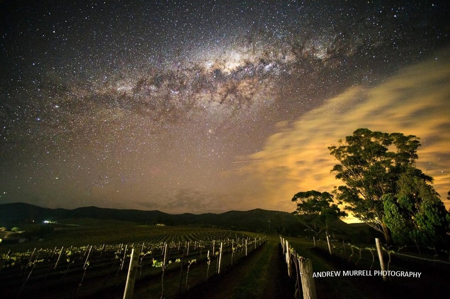 The Vineyards at Pokolbin with the Milky Way setting.