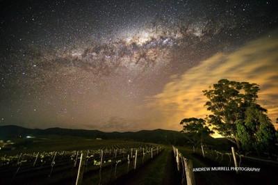 Star Wine