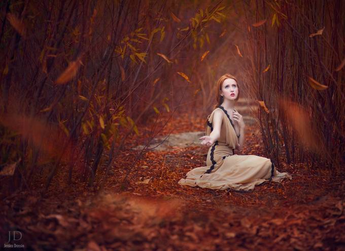 Waiting for Fall by JessicaDrossin