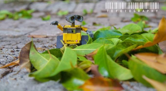 Wall E by estefannyosorio - 300 Toys Photo Contest