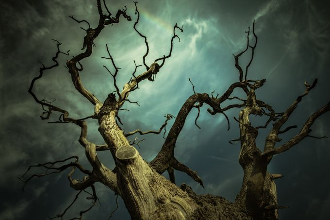 Titan by CPF_Photography - Skywards Photo Contest