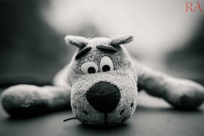 Scooby-Dooby-Doo!! by rajuambati - 300 Toys Photo Contest