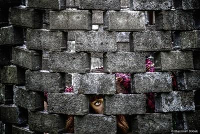 Through the brick