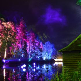 Taken in The Enchanted Forest, Pitlochry