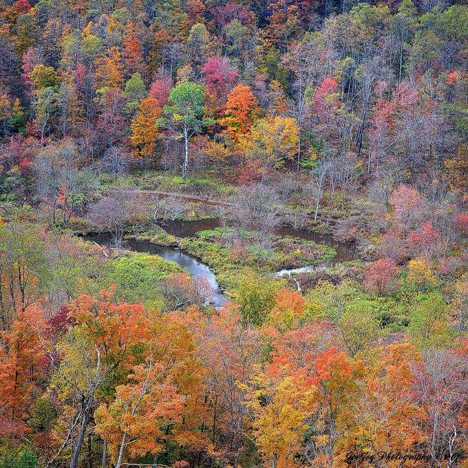 Taken with Nikon D5100 using AF-S Nikkor 70-300 mm 1:4.5-5.6 G lens.  Enhanced and resized using onOne Perfect Photo Suite 8.5.  This is actually two photos merged together using Photoshop Elements 12.  This view of Kinzua Creek is from atop the Kinzua Bridge.
