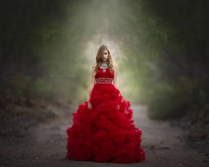 Scarlet Obsession by lisaholloway - Elegant Photo Contest