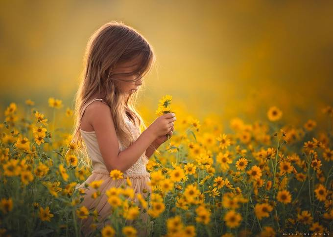 Golden Daydreams by lisaholloway
