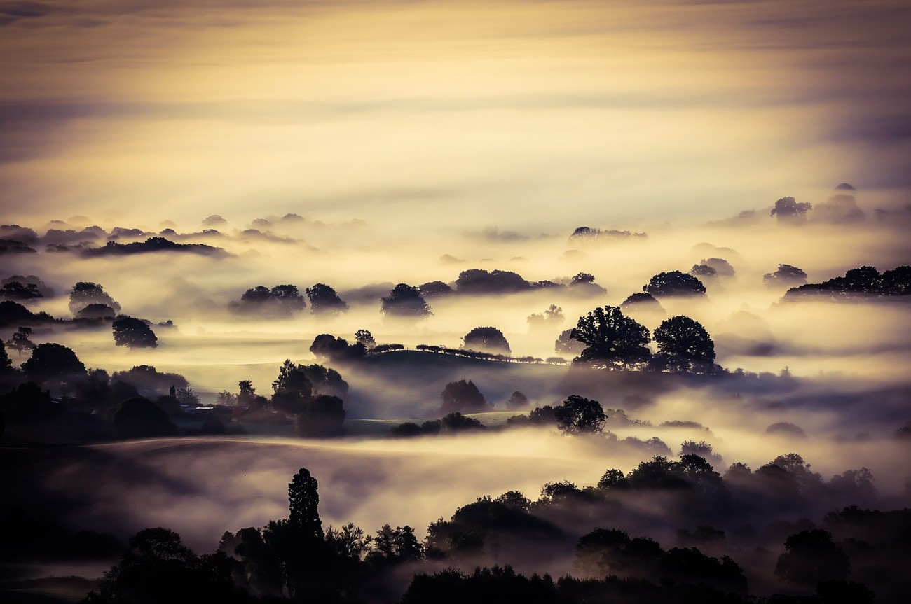 40+ Awesome Shots Of Haze - View The Lost In The Fog Photo Contest Finalists!