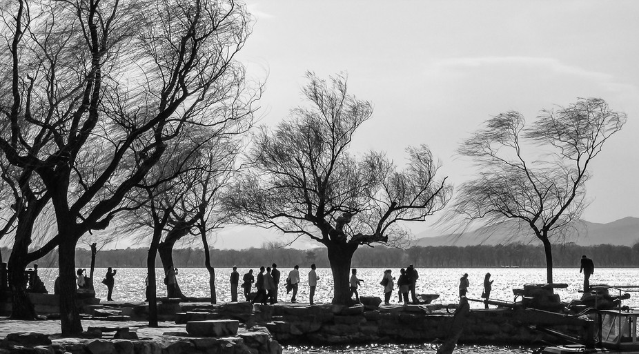 Visitors & trees silhouetted at the lake besides the Summer Palace in Beijing