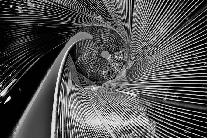 Looking Up 2 by Kazza60 - Twisted Lines Photo Contest