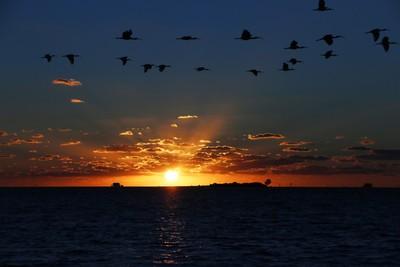 Durney Key Island