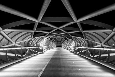 Rhoon Walking Bridge 1