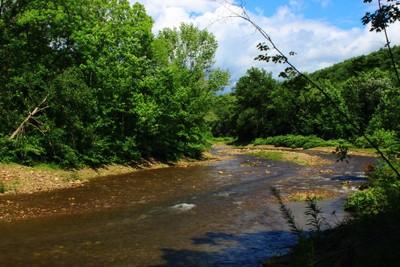 Muncy Creek