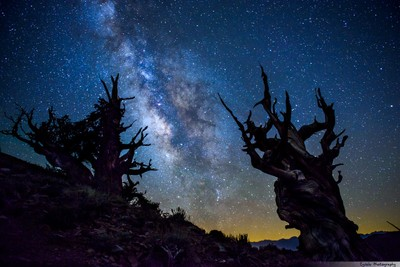 5 Tips That Will Improve Your Milky Way Photography