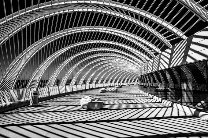 Tunnel Vision BW by Studio19 - Patterns In Black And White Photo Contest