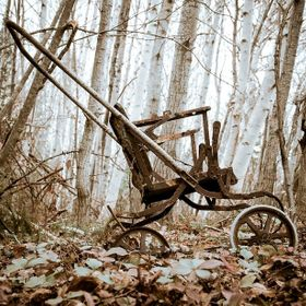 An old stroller found in a wooded dumpsite.