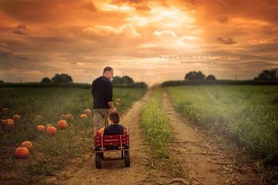 Pumpkin picking with Dad