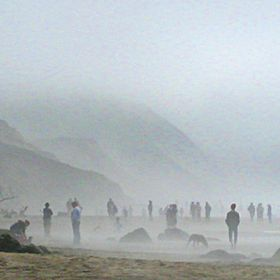 A foggy day at Fort Funston in San Francisco, CA.