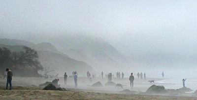 Foggy Day at Fort Funston