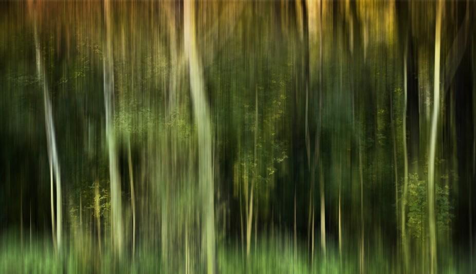 blurry stuff /01