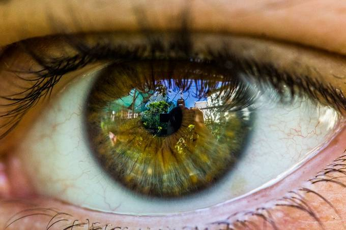 IMG_2989 by PHOTOHAPPY - Green Eyes Photo Contest