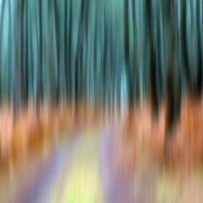 forestabstract3