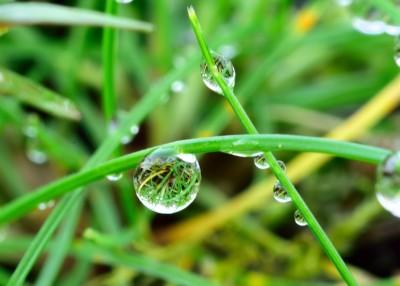 droplets 3