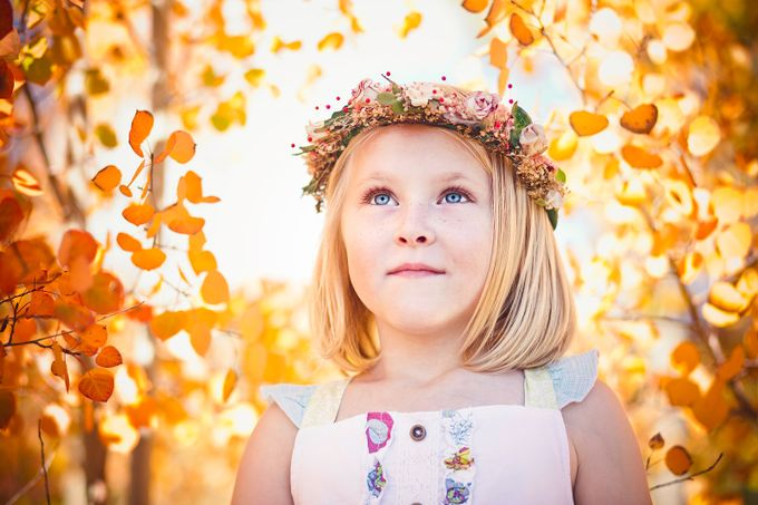 Autumn Aspens by LelaKieler - Innocence Photo Contest