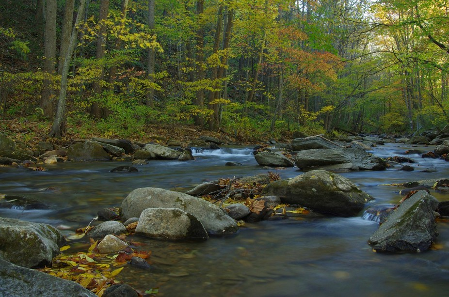 Creek along park by Old Fort, NC where Andrews Geyser is located.