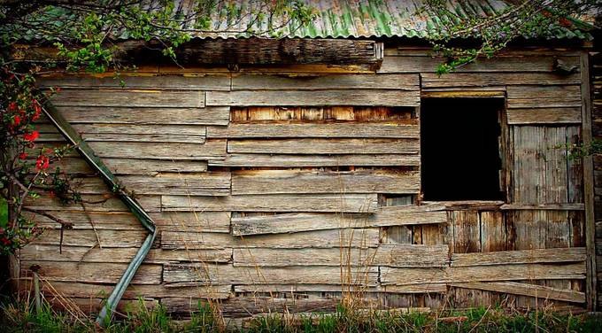 Old decaying homestead.
