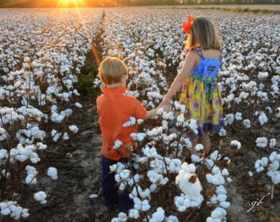 Children in high cotton