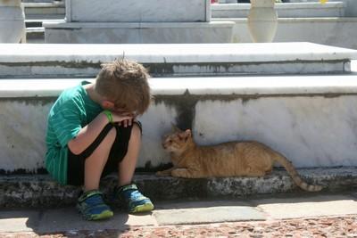 A boy and a cat named Sam