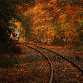 Train tracks in my local town. Colors of Fall are always a favorite time of year for me.