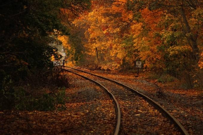Train tracks. by Michael__Sutton - Fall 2016 Photo Contest