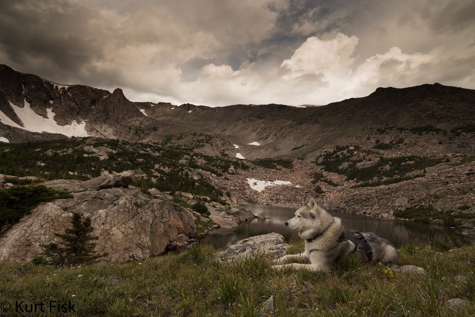Max relaxing at Emmaline Lake. Back in May Max and I tried this hike only to get turned back by d...