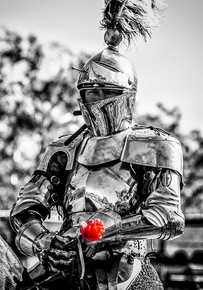 The Lady Knight