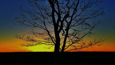 Chilly autumn sunrise