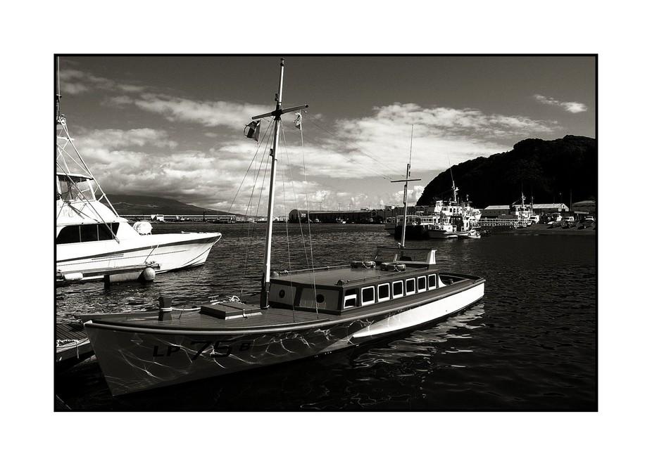 Harbour scene, Horta, island of Faial, the Azores